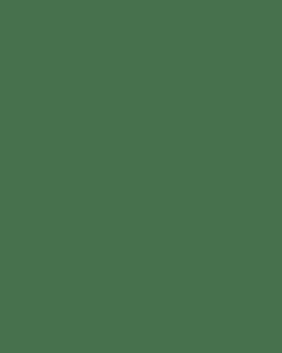 Steak & Mushroom Family Pie